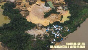 Garimpo Ilegal Terra Yanomami 2020 Surival